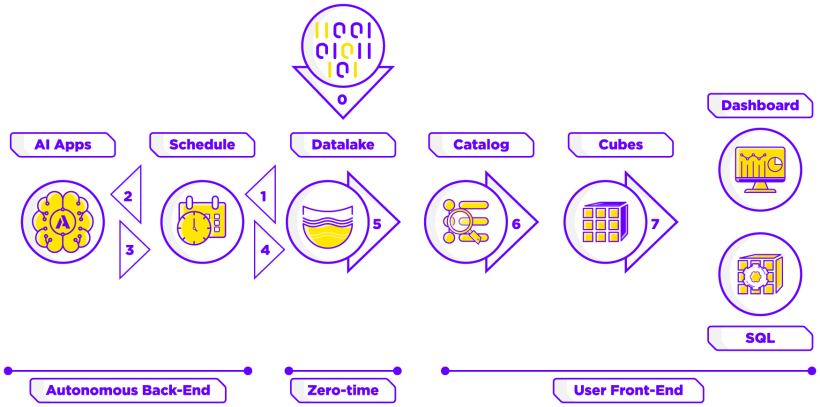 Infografía Datup Plataforma BDaaS AIaaS IoTaaS Procesos
